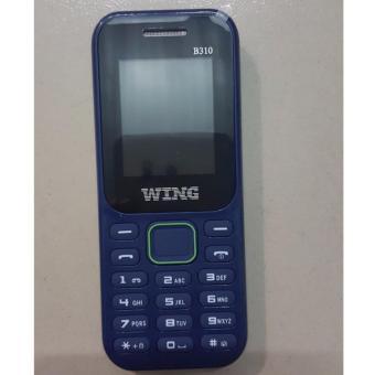 Wing B310