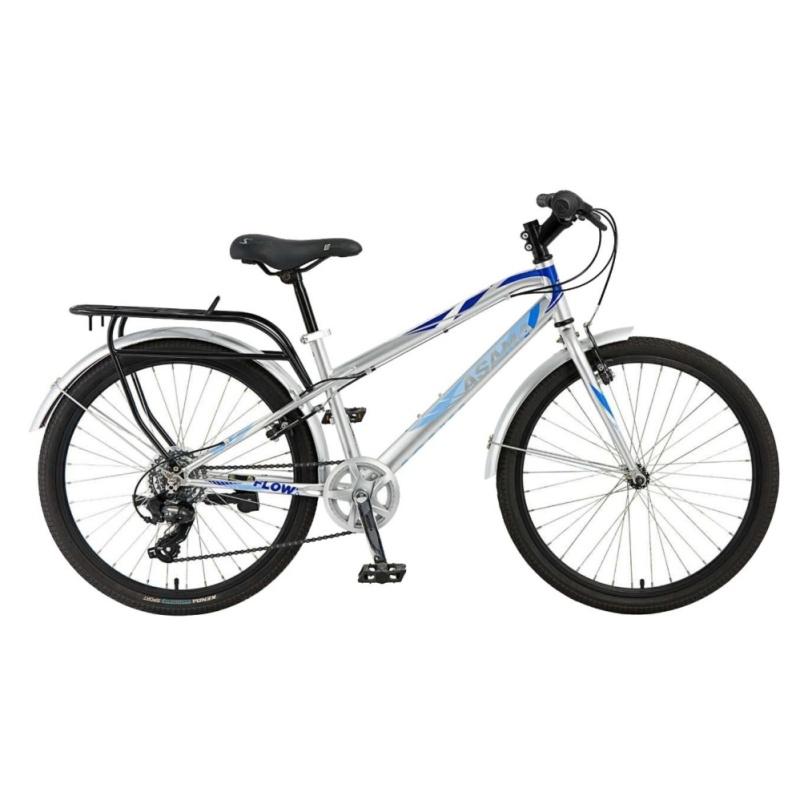 Phân phối Xe đạp thể thao Asama TRK - FL 2401(Bạc)