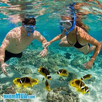 Tour Phú Quốc Hè 2017 3N3Đ - lặn ngắm san hô