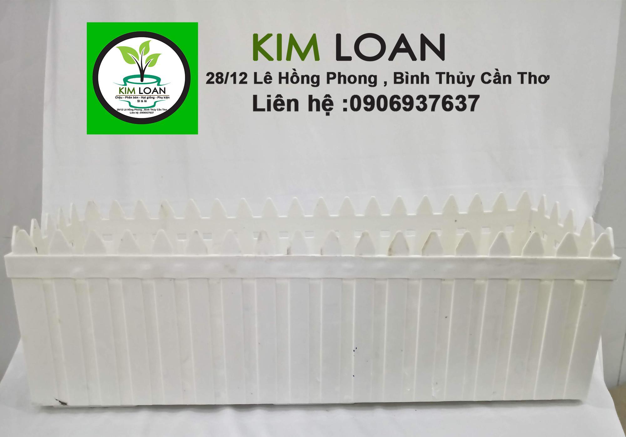 Combo 2 chậu hàng rào nhựa 58x16x18cm
