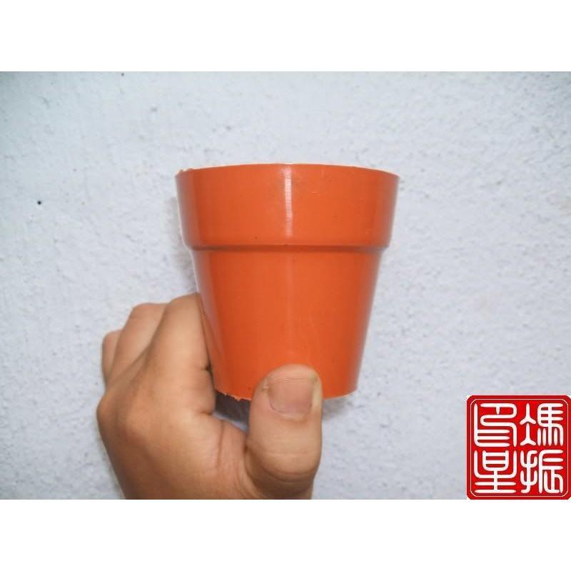 Chậu Nhựa Tròn 7X7 (Set 50 Cái)