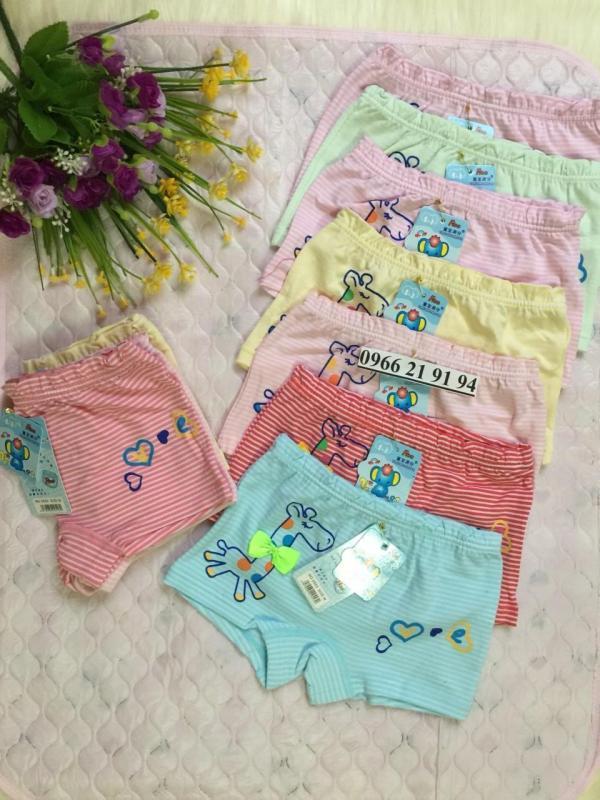 Nơi bán 05 quần lót đùi hươu kẻ bé gái cao cấp (2-10T)  NK Quảng Châu