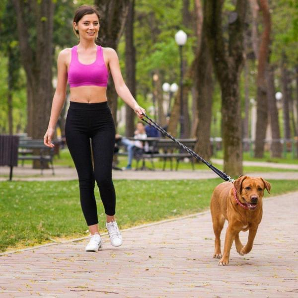Dây dắt chó lớn trợ lực dây dắt chó mèo phản quang sợi lớn 150cm x 1.2cm - Đen