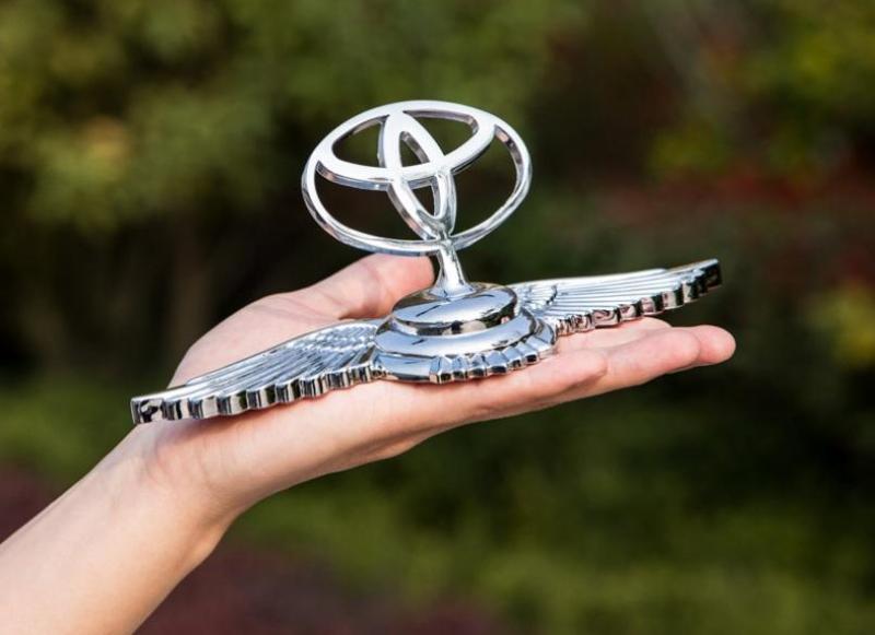 Logo cánh chim 3D cao cấp gắn capo ô tô