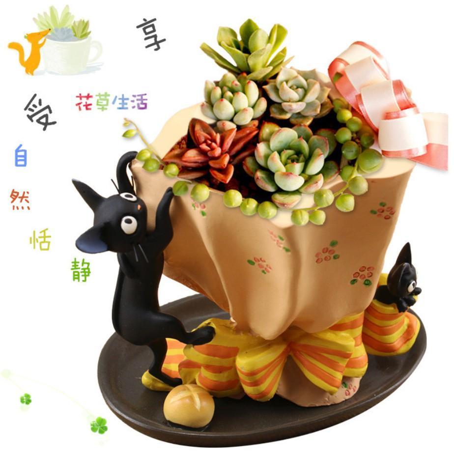 Hình ảnh Chậu Bonsai- Tiểu Cảnh- Xương Rồng- Sen Đá Mẫu Mèo Đen Và Kem Bơ