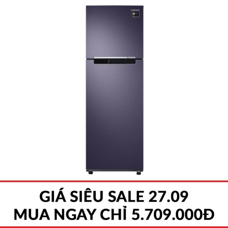 Tủ lạnh 2 cửa Samsung RT25M4033UT/SV 256L (Xanh xám)