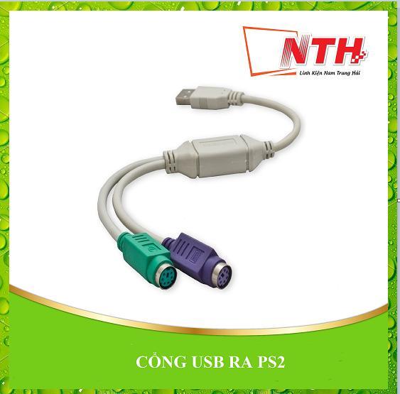 Bảng giá CỔNG USB RA PS2 Phong Vũ