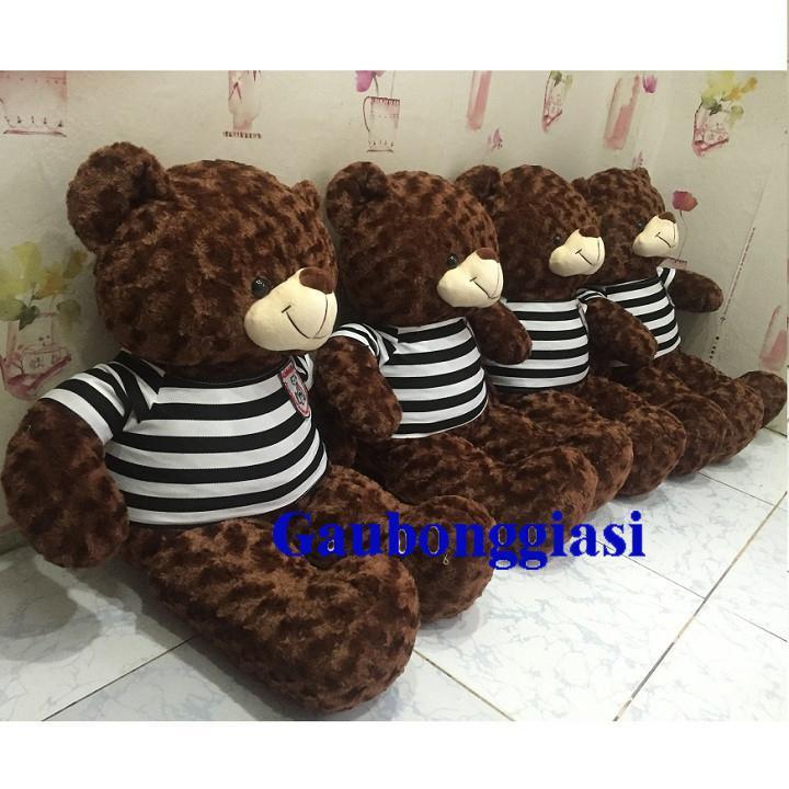 Gấu Bông Teddy Cao Cấp Khổ Vải 1m Màu Sôcola By Gaubonggiasi.