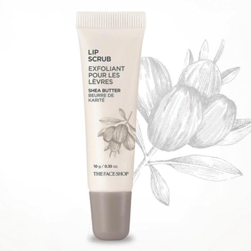 Son Dưỡng Môi Dạng Kem Làm Mềm Môi The Face Shop Lip Care Cream 12g #01 Shea Butter