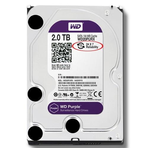Giá HDD Western Purple 2TB dòng ổ cứng chuyên dụng cho camera(Tím)