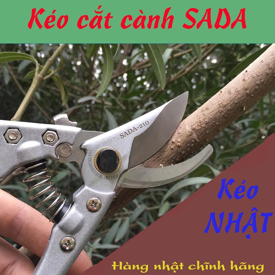 kéo cắt cành  SADA  NHẬT BẢN  210  - Bảo hành 3 tháng 1 đổi 1 - kéo cắt cành ngọt sắc