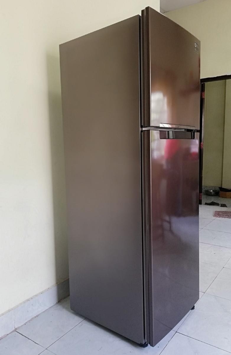 Hình ảnh Tủ lạnh samsung inverter 256 lít