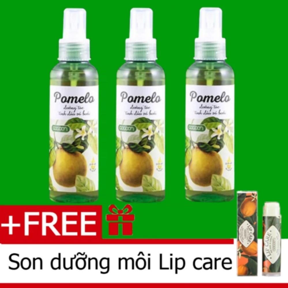 Hình ảnh Bộ 3 Chai Xịt Tóc Bưởi Pomelo Kích Thích Mọc Tóc Tặng 1 Son Dưỡng Môi Lip Care