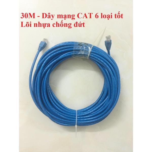 Bảng giá Dây cáp mạng internet/ mạng LAN 30m bấm sẵn 2 đầu (CAT 6 loại tốt) Phong Vũ