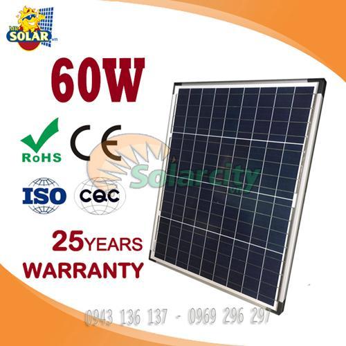 Pin năng lượng mặt trời 60w Poly