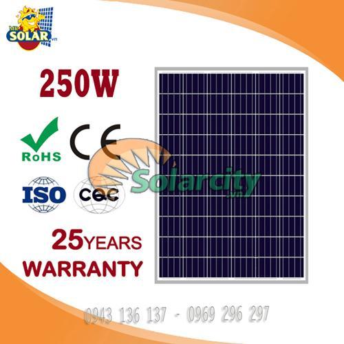 Pin Năng Lượng Mặt Trời Poly 250w World Energy
