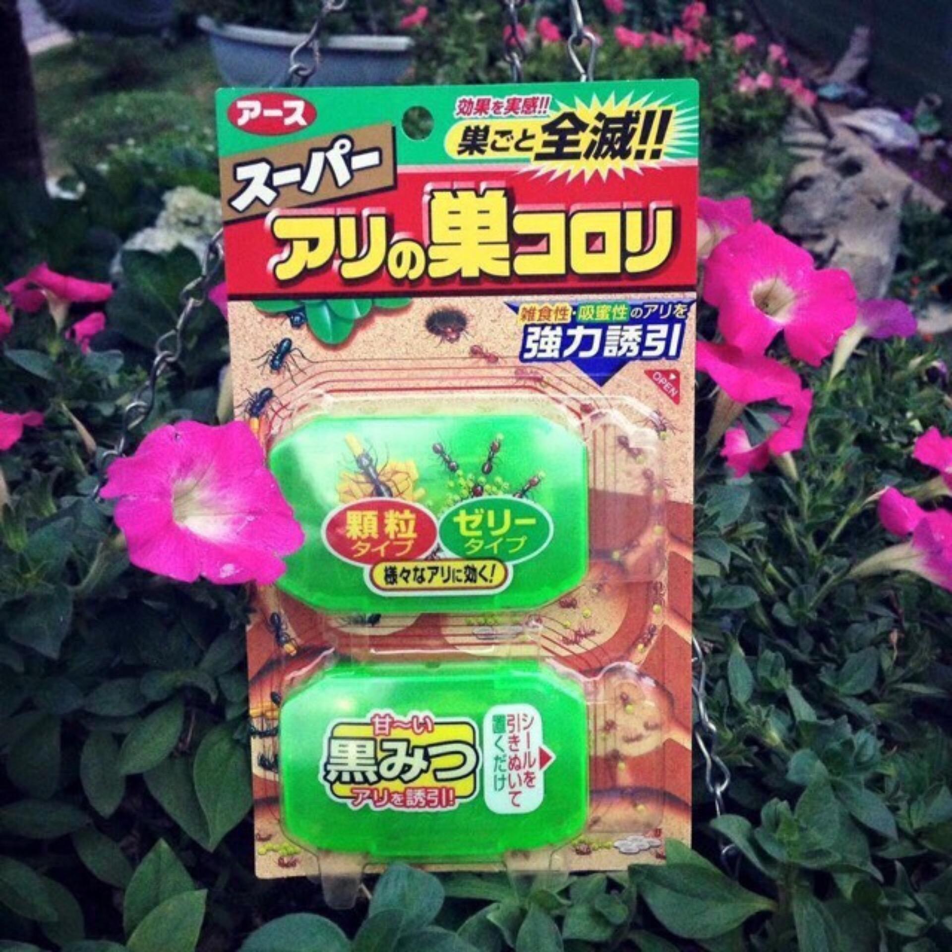 Cửa Hàng Bộ 2 Hộp Thuốc Diệt Kiến Nhật Bản Super Arinosu Koroki Nhật Bản Trực Tuyến
