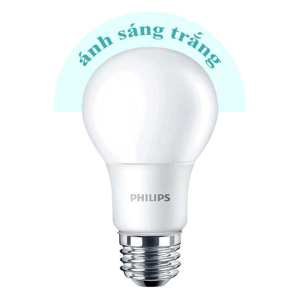 Bóng đèn Philips Ledbulb 6500K đuôi E27 230V A60 (7W) - Ánh sáng trắng