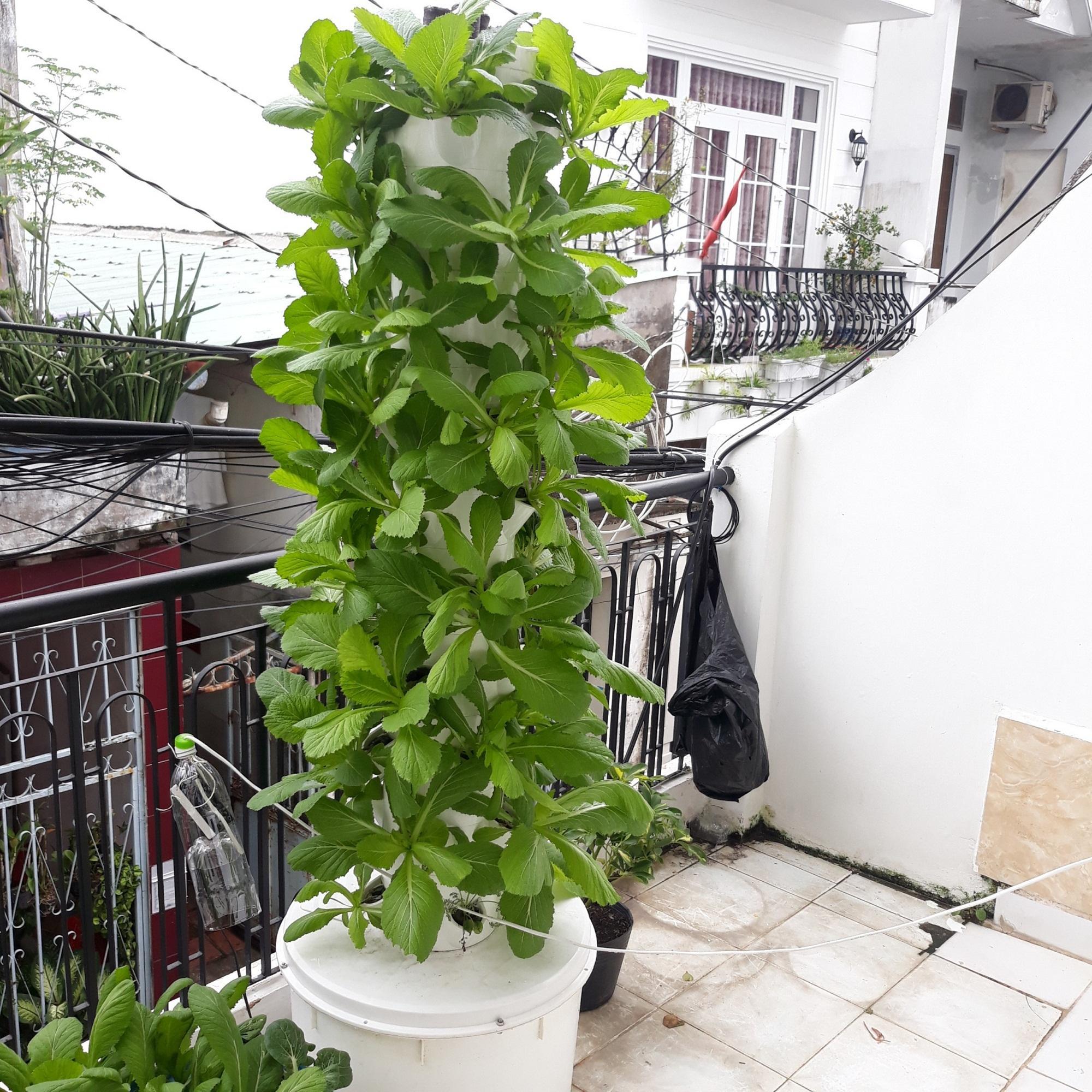 Trụ khí canh trồng rau sạch công nghệ NASA ( Tặng kèm máy bơm tự động tưới)