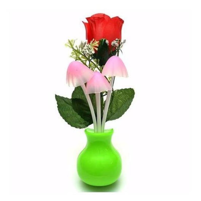 Bảng giá Đèn ngủ cảm ứng nấm chùm và hoa hồng