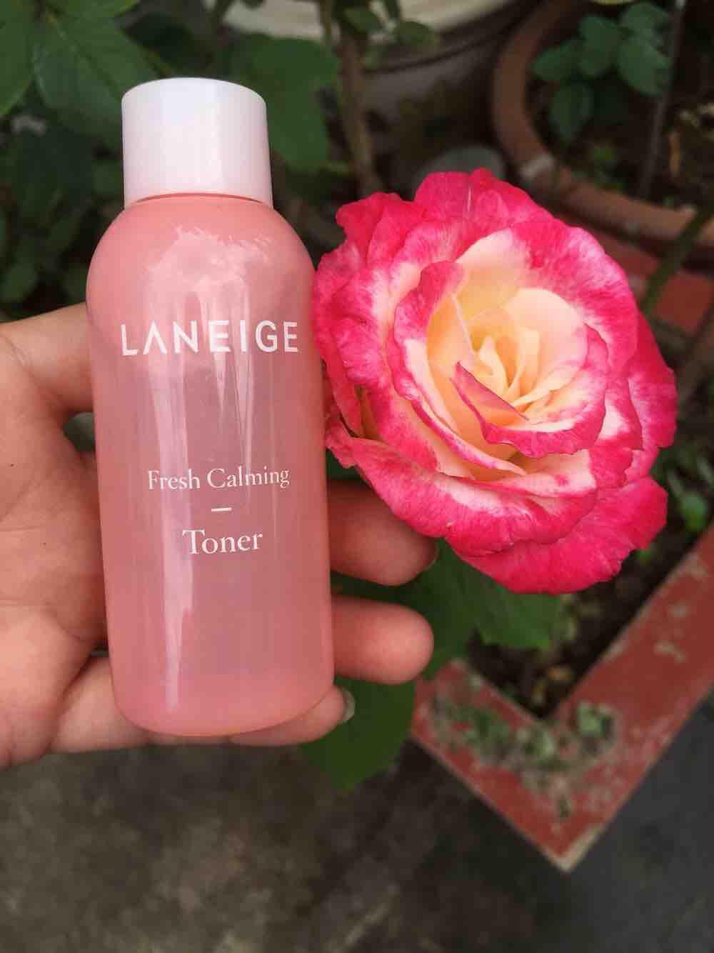 Nước hoa hồng Laneige