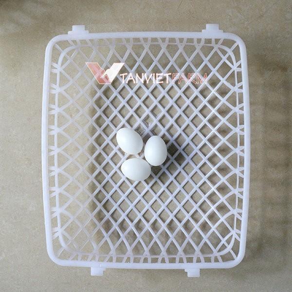 HCM-(bộ 2 chiếc) ổ đẻ chim bồ câu / tổ đẻ chim câu bằng nhựa-HP10409TC