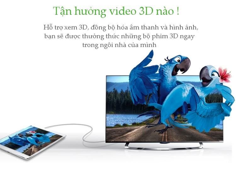 Cáp chuyển Micro HDMI Type D sang HDMI Type A Dài 1-3M UGREEN HD127