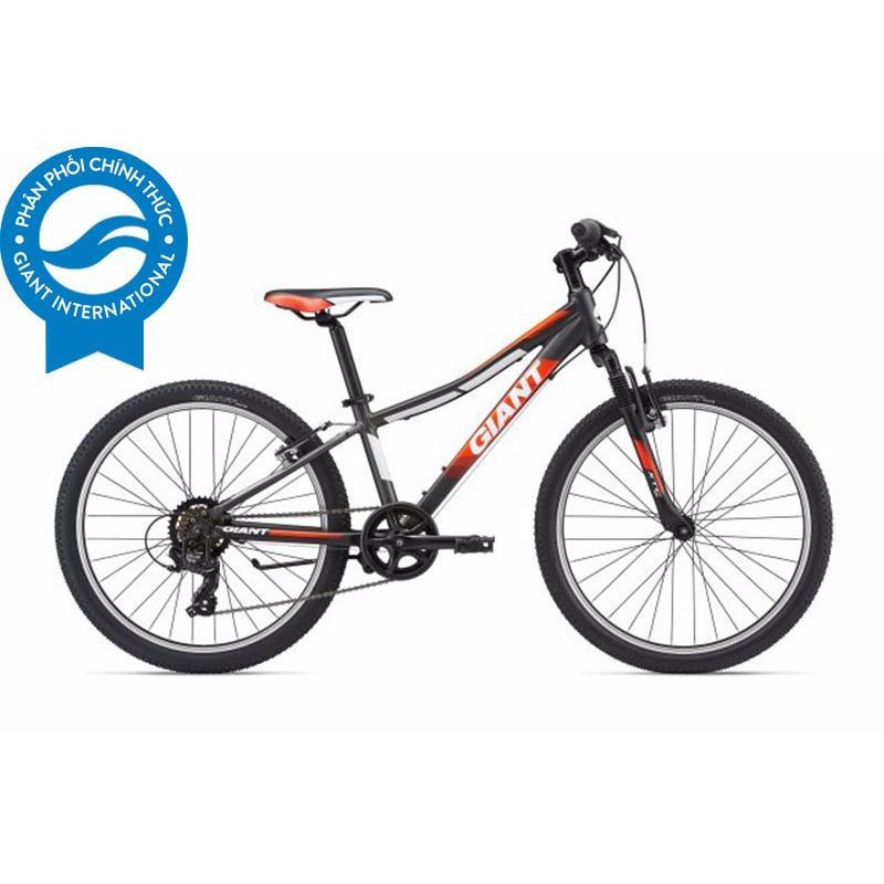 Xe đạp trẻ em GIANT XTC JR 2 24 (Than chì/đỏ)