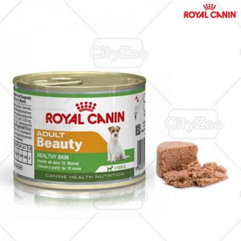 ROYAL CANIN MINI ADULT BEAUTY - CHÓ KÍCH THƯỚC NHỎ TRƯỞNG THÀNH CÓ DA NHẠY CẢM