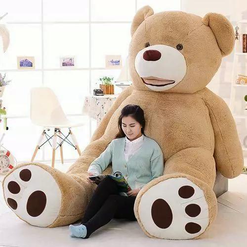 Hình ảnh Gấu Bông Teddy