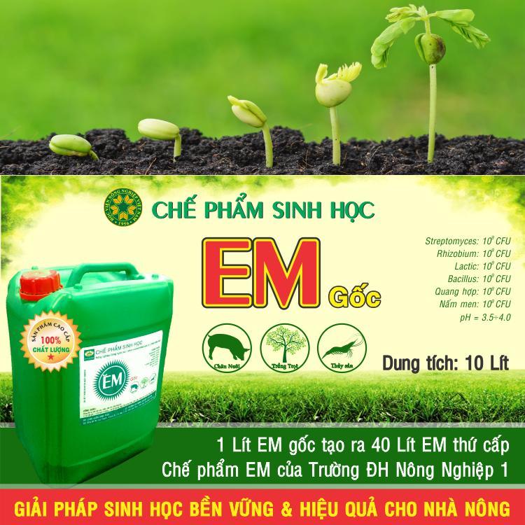 Chế phẩm sinh học EM gốc (EM1)