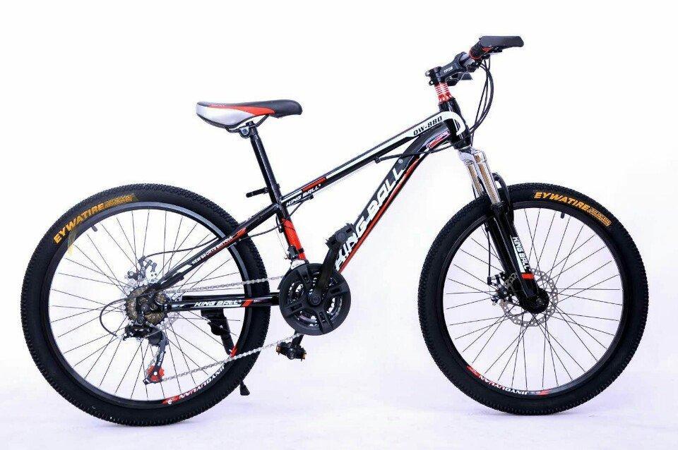 xe đạp thể thao cao cấp
