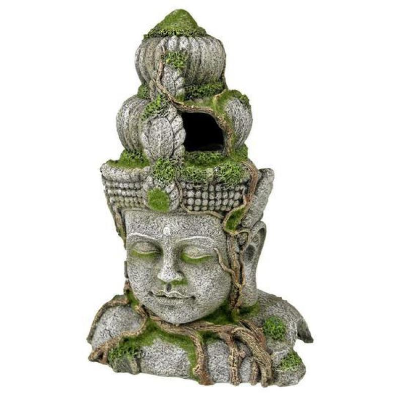 trang trí thuỷ sinh , hồ cá - Phật Bayon Cambodia