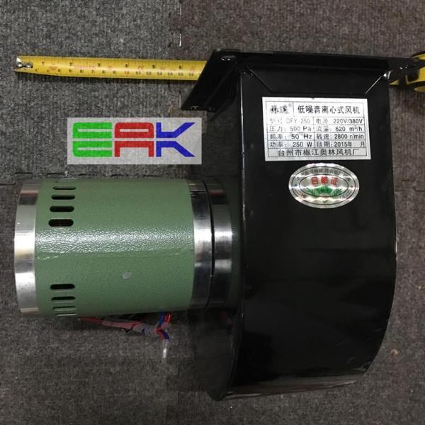 Quạt sò - quạt hút - quạt hình sên DFY250 250W - 220V - 2800r /min