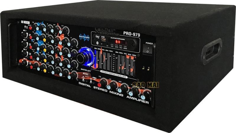 Âm Ly 12 SÒ LỚN kết nối Bluetooth Cali.D&Y PRO-979 ( Tặng Loa Treble JBM )