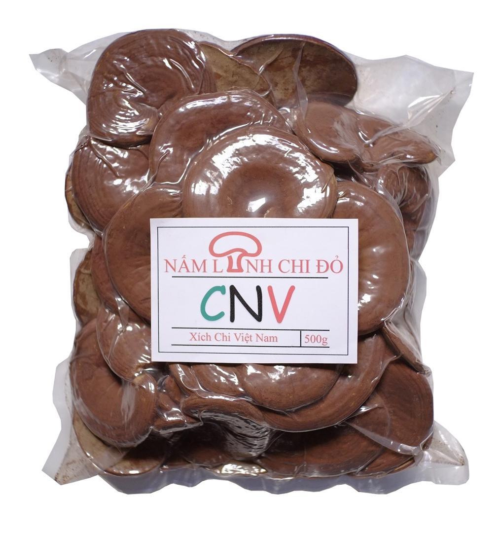 Nấm linh chi đỏ CNV 500g (Xích chi Việt Nam)