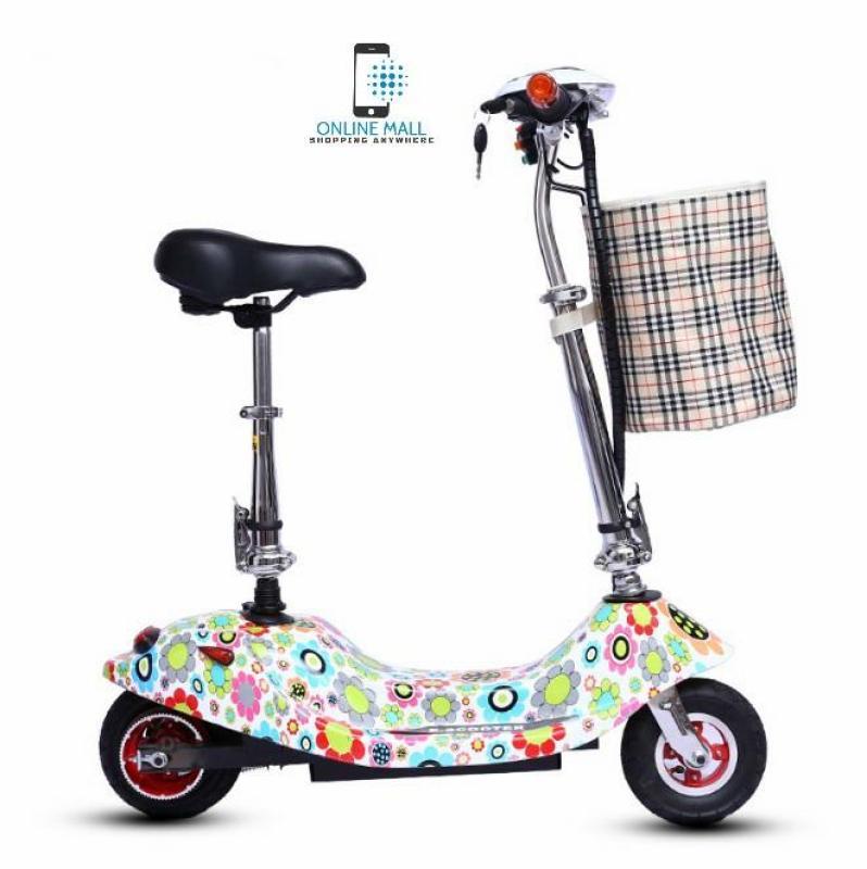 Giá bán Xe scooter điện 24V tải trọng 120kg (có giỏ xách) Sun Flower