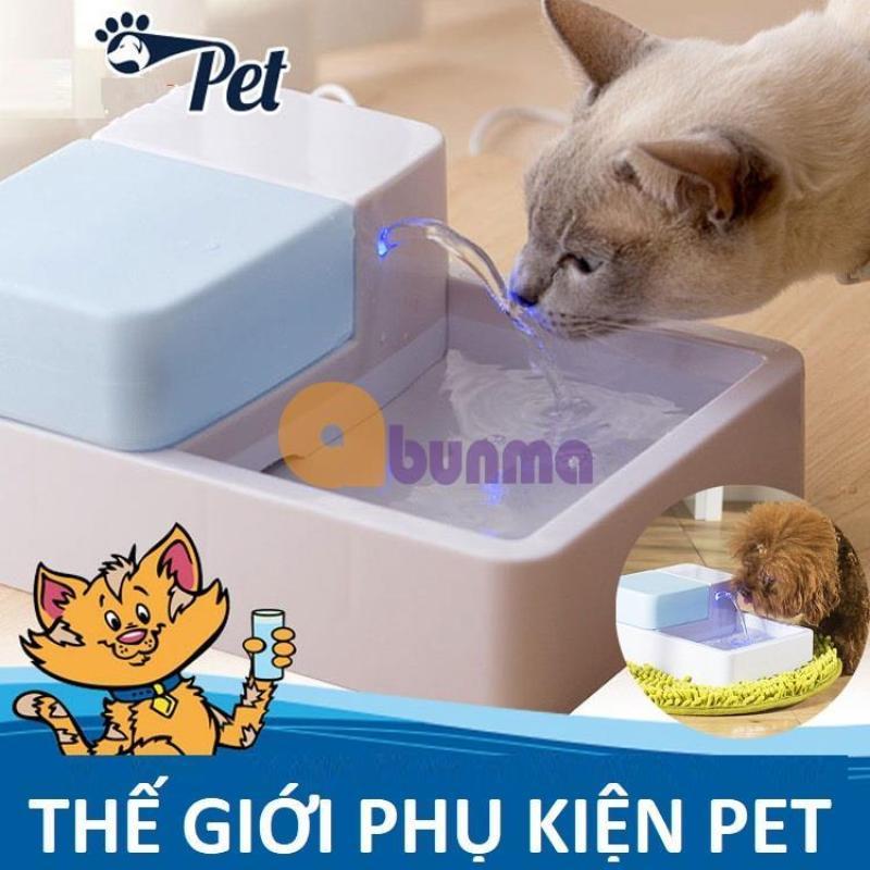 Khay uống nước cao cấp cho Pet (Chó, mèo) PFD-12, có đèn led, phun nước, lọc nước