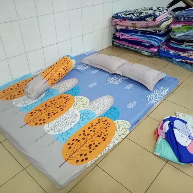 Hình ảnh Ga Chun và 2 áo gối Đủ size ( Mua 02 Bộ Tặng 02 áo gối ôm màu ngẫu nhiên)