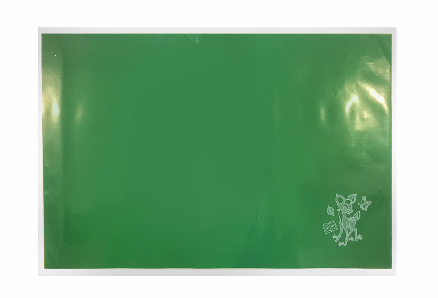 Mua Bao tập + Giấy màu Lá TN (25 tờ/xấp)