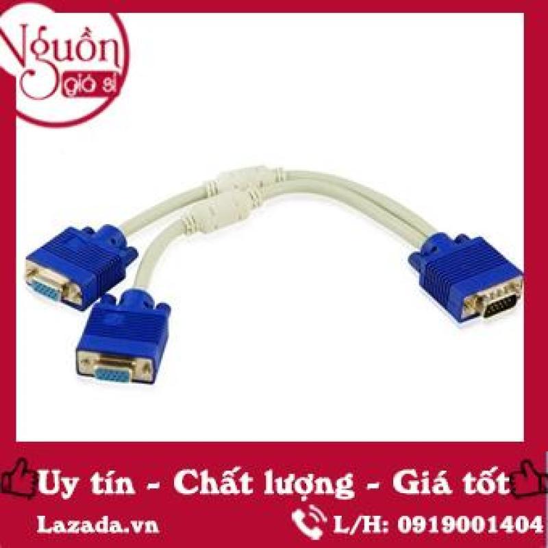 Bảng giá Cáp chia VGA 1 cổng ra 2 cổng - DVGA121 Phong Vũ