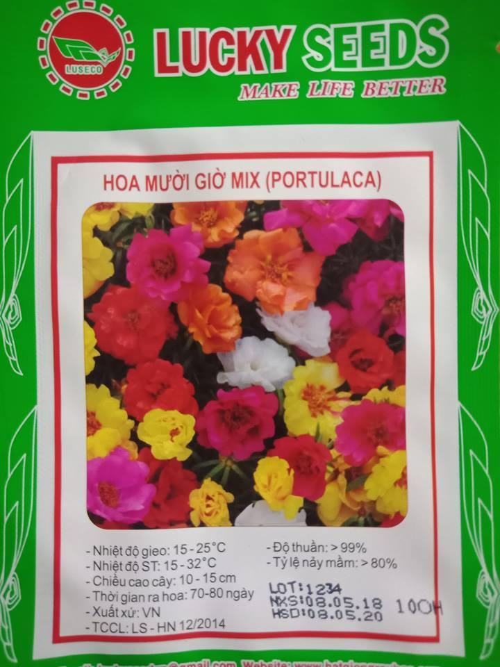 Hạt Giống Hoa Mười Giờ Mix - 100 Hạt By Lucky Vina.