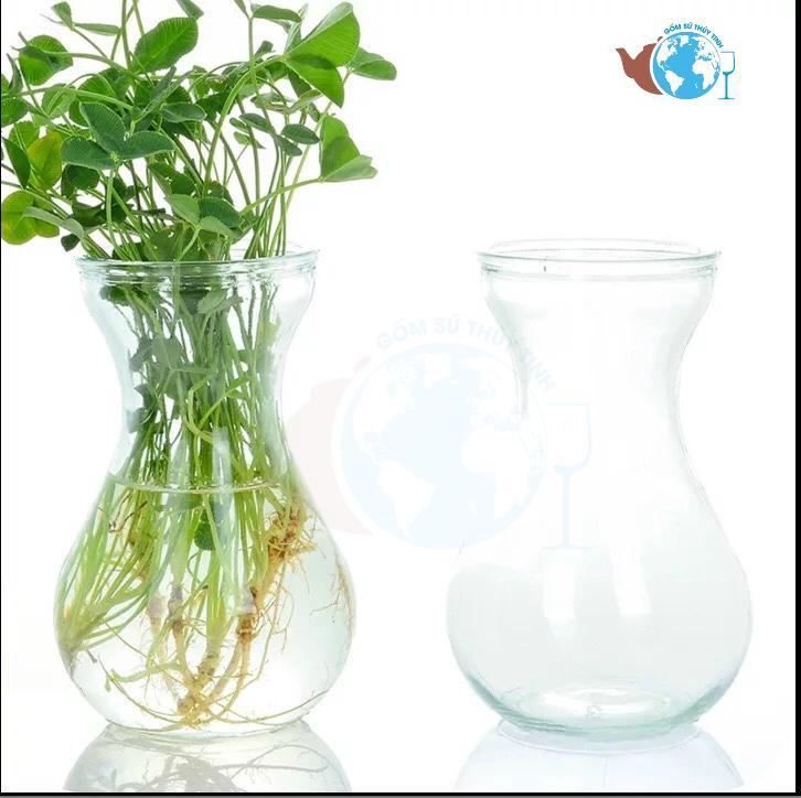 Hình ảnh Bình Bông Lọ Hoa Thủy Tinh Miệng Loe