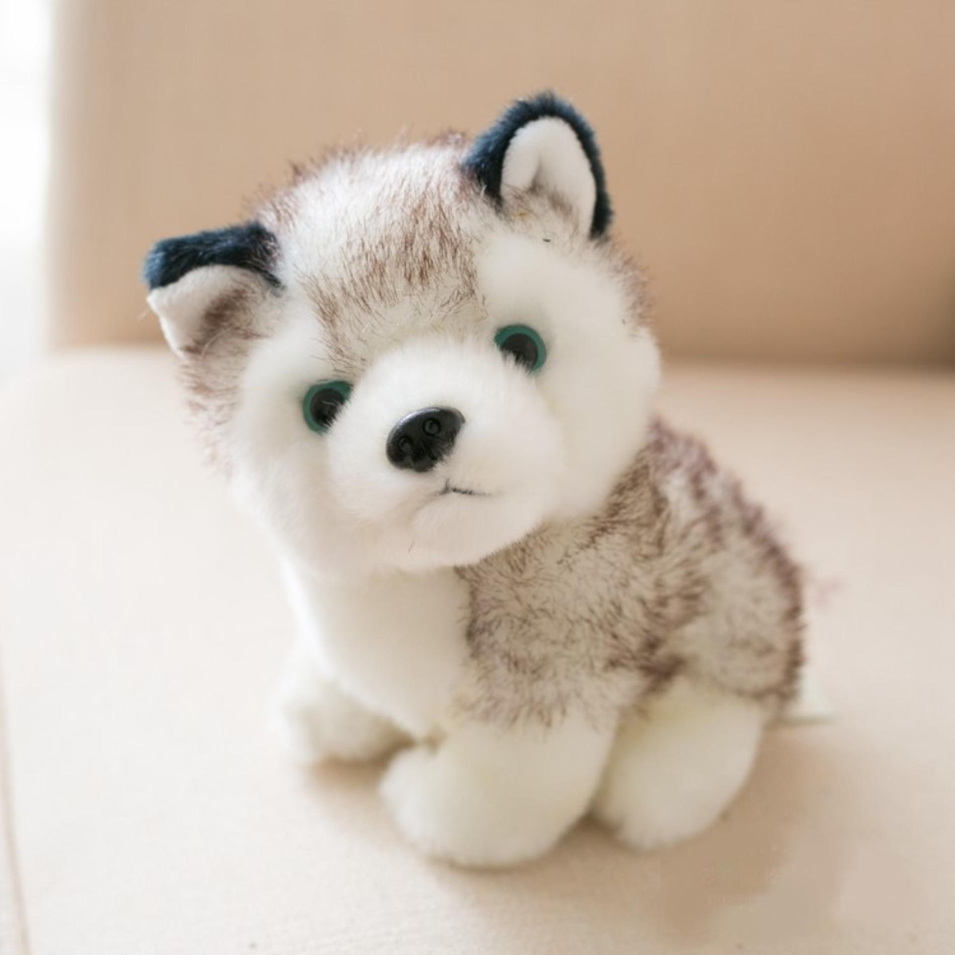 Gấu bông, thú nhồi bông - Chó bông husky