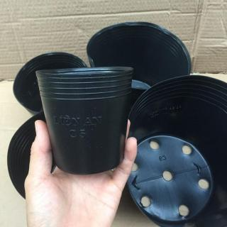 Bộ 50 chậu trồng cây hoa nhựa mềm C5 (KT 10x11) thumbnail