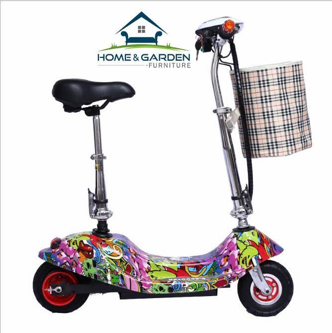 Giá bán Xe scooter điện tải trọng 120kg 24V (có giỏ xách) Sun Flower
