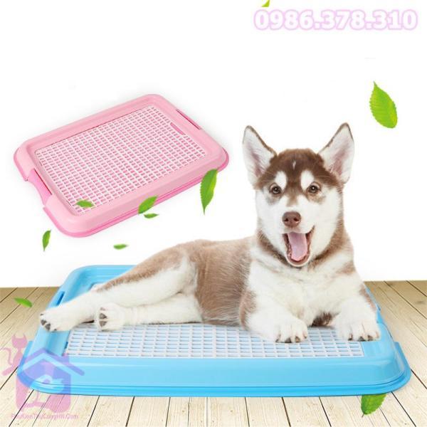 Khay vệ sinh cho chó - phụ kiện thú cưng
