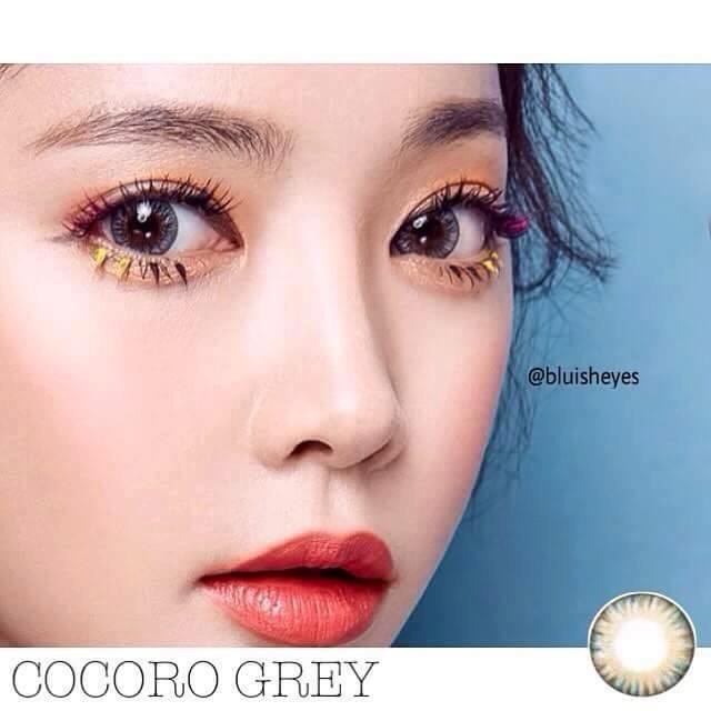Hình ảnh COMBO 2 : NƯỚC NGÂM + LENS Kính áp tròng - Lens XÁM TÂY Hàn Quốc Vassen