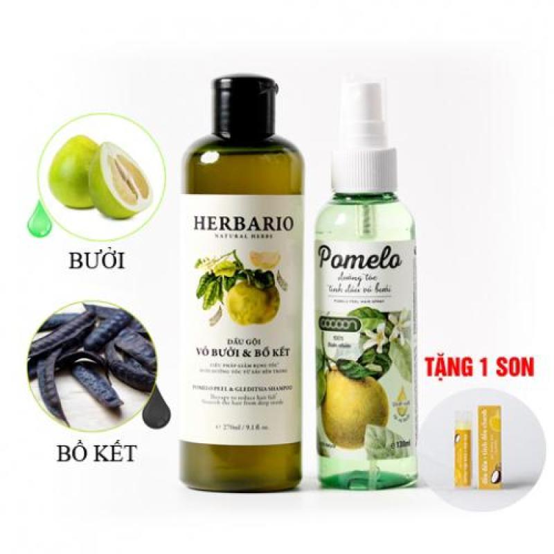 Liệu trình trị rụng tóc phục hồi tóc hư tổn 1 dầu gội HERBARIO và 1 dưỡng tóc POMELO tặng 1 son dưỡng COCOON tốt nhất