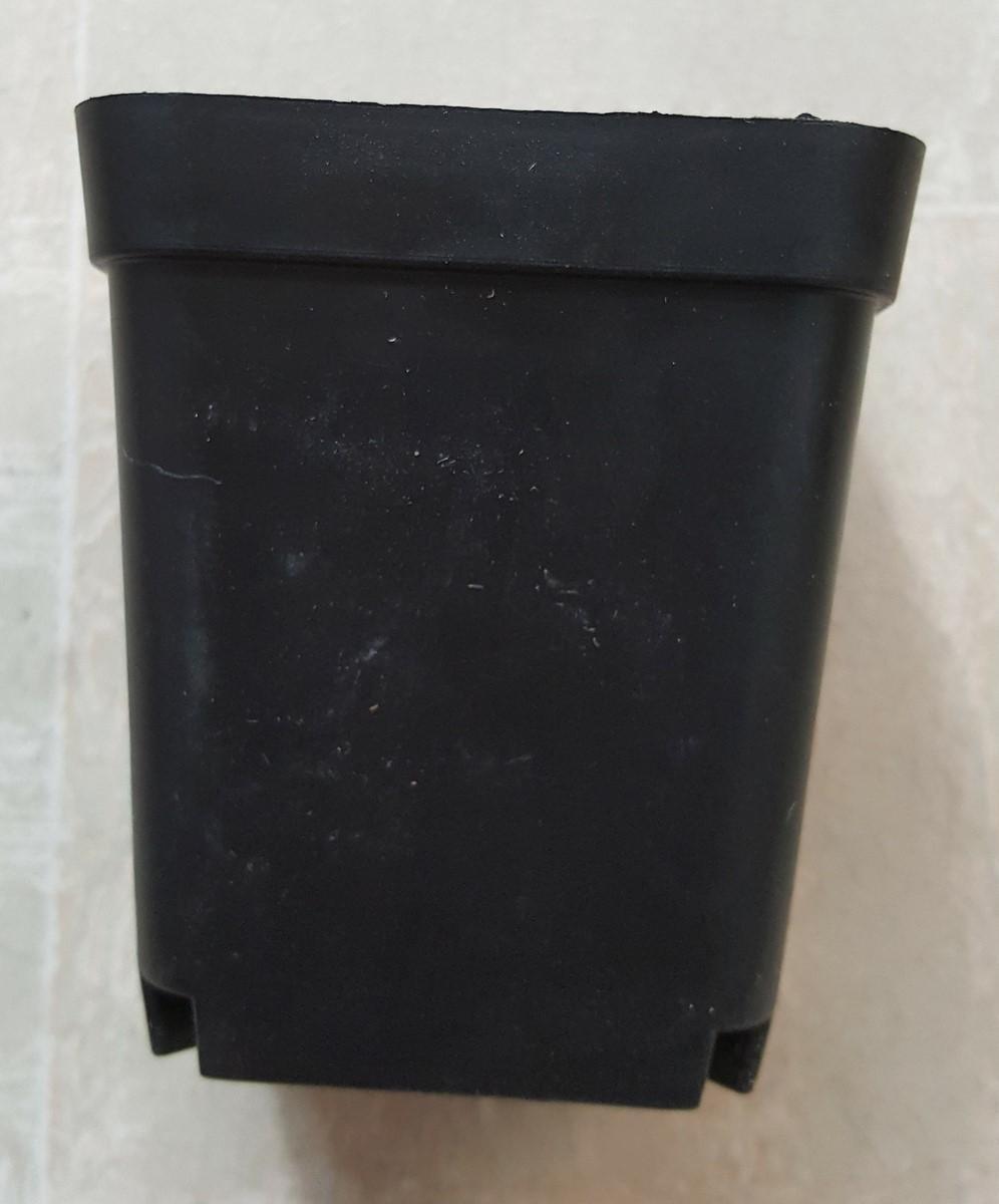 Chậu vuông 7x7 màu đen (Set 500 cái)